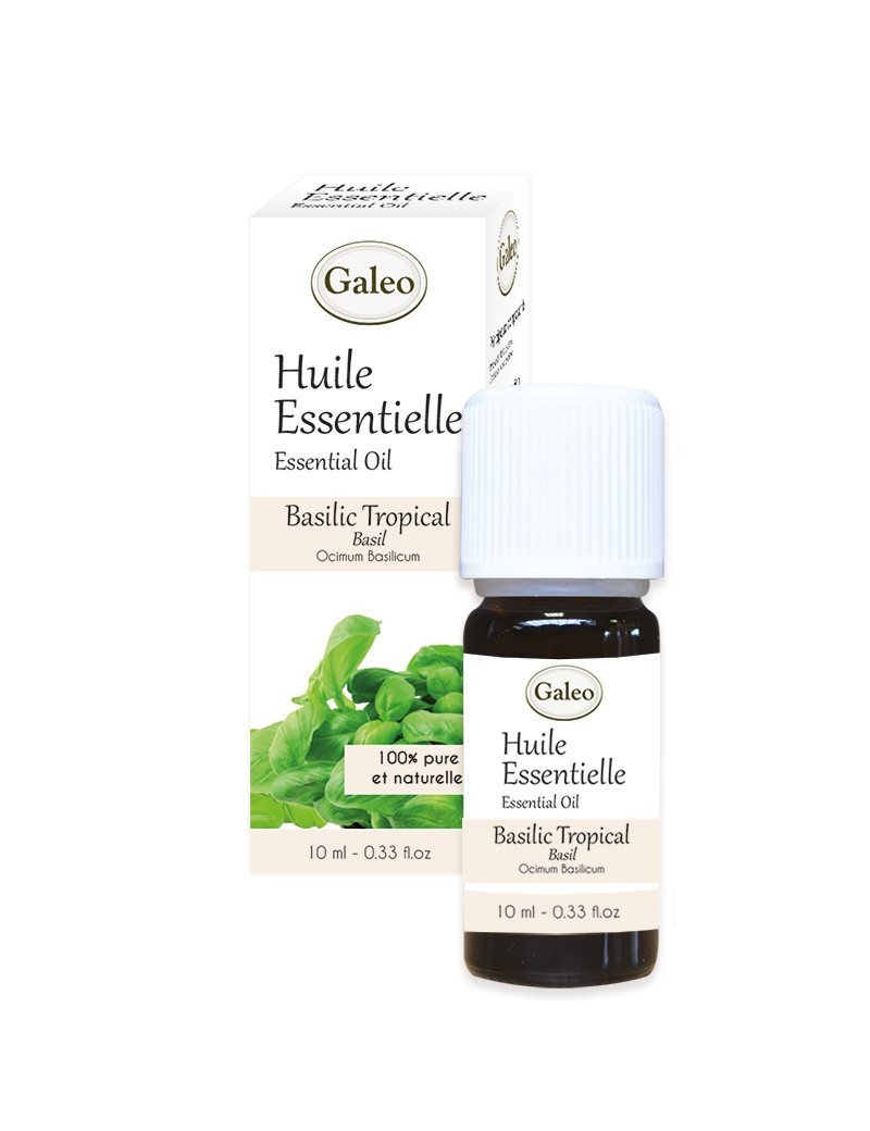 Conventional Essential Oil Tropical Basil