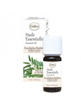 Conventional Essential Oil Eucalyptus Radiata