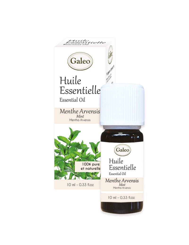 Conventional Essential Oil Mint