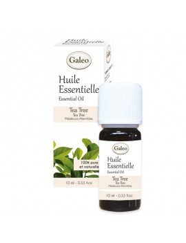 Conventional Essential Oil Tea Tree