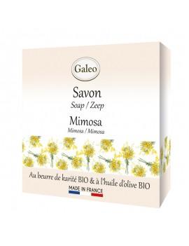 Soap Mimosa