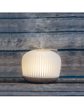 Ultrasonic Essential Oil Diffuser Orion